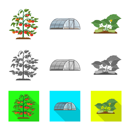 Isolated object of greenhouse and plant logo. Collection of greenhouse and garden vector icon for stock. Zdjęcie Seryjne - 111490859