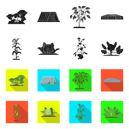 bitmap illustration of greenhouse and plant symbol. Set of greenhouse and garden stock symbol for web.
