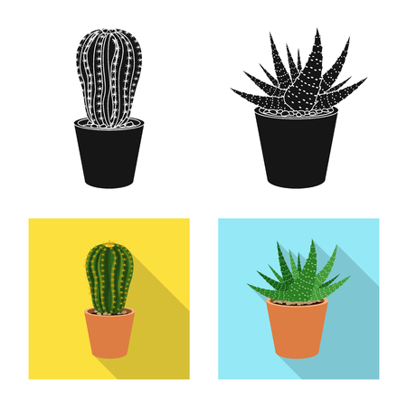 Isolated object of cactus and pot symbol. Set of cactus and cacti stock symbol for web.