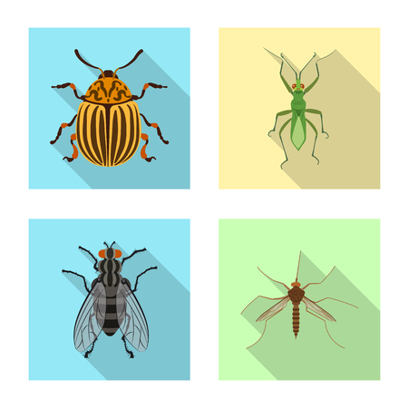 Isolated object of insect and fly sign. Collection of insect and element stock symbol for web.
