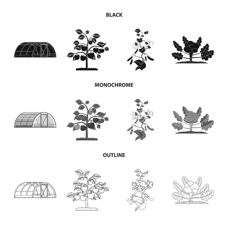 Vector design of greenhouse and plant logo. Collection of greenhouse and garden vector icon for stock.