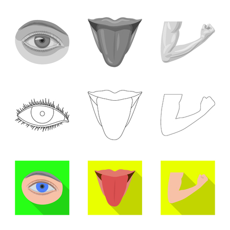 Isolated object of human and part icon. Collection of human and woman vector icon for stock.