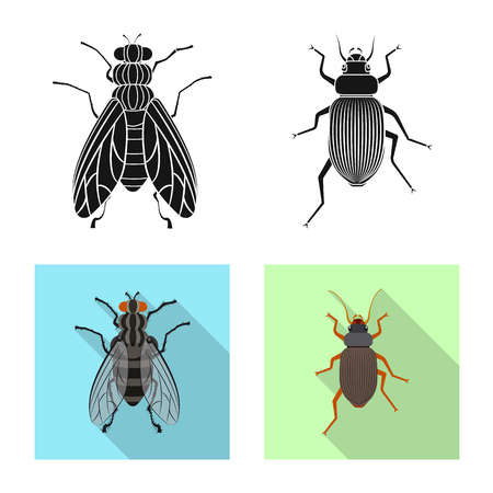 Isolated object of insect and fly sign. Set of insect and element stock symbol for web.