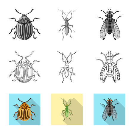 Vector illustration of insect and fly sign. Set of insect and element vector icon for stock. Banque d'images - 112692585