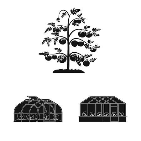 Isolated object of greenhouse and plant logo. Collection of greenhouse and garden stock symbol for web.