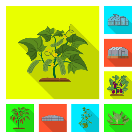 Isolated object of greenhouse and plant logo. Set of greenhouse and garden vector icon for stock.