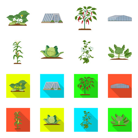Vector design of greenhouse and plant sign. Collection of greenhouse and garden vector icon for stock.