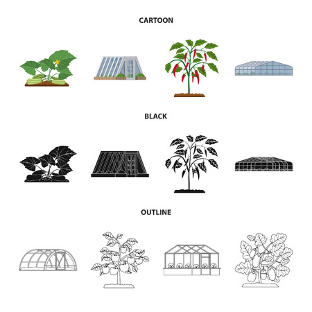 Vector illustration of greenhouse and plant icon. Collection of greenhouse and garden stock symbol for web. Ilustracja
