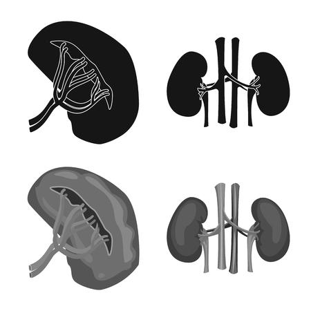 Vector illustration of body and human symbol. Collection of body and medical stock vector illustration. Stock Illustratie