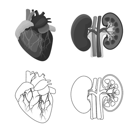 Isolated object of body and human logo. Collection of body and medical vector icon for stock.