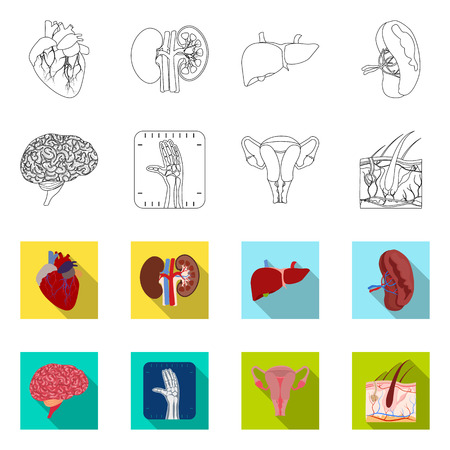 Vector illustration of body and human sign. Set of body and medical vector icon for stock. Illustration