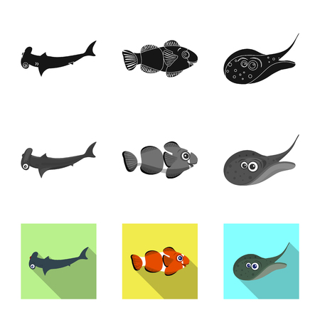 Vector illustration of sea and animal logo. Collection of sea and marine stock symbol for web. Illustration