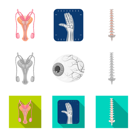 Vector design of body and human symbol. Set of body and medical vector icon for stock.