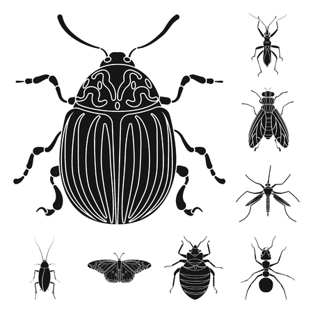 Vector illustration of insect and fly sign. Collection of insect and element vector icon for stock.