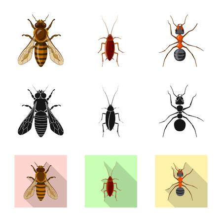 Ilustración de vector de icono de insectos y moscas. Colección de insectos y elementos de ilustración vectorial de stock.