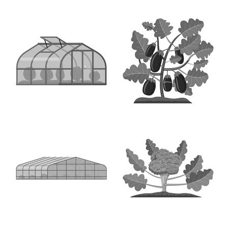 Vector illustration of greenhouse and plant symbol. Set of greenhouse and garden vector icon for stock.