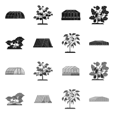 Isolated object of greenhouse and plant icon. Collection of greenhouse and garden stock vector illustration. Ilustracja