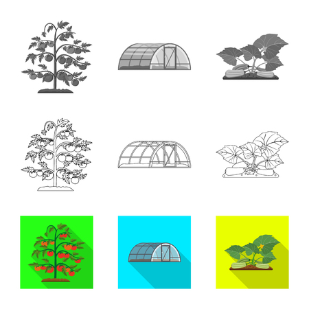 Vector illustration of greenhouse and plant symbol. Collection of greenhouse and garden stock vector illustration. Zdjęcie Seryjne - 113116151