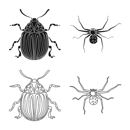 Isolated object of insect and fly symbol. Collection of insect and element stock symbol for web. Banque d'images - 113407068