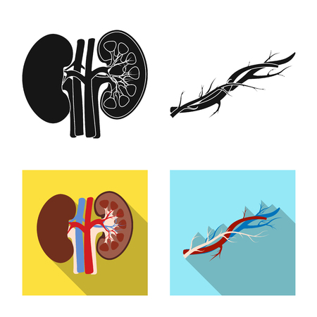 Vector illustration of body and human icon. Collection of body and medical stock symbol for web. 일러스트