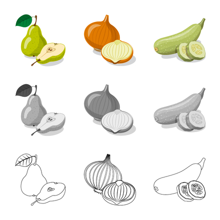Isolated object of vegetable and fruit sign. Set of vegetable and vegetarian stock vector illustration. Zdjęcie Seryjne - 113603640