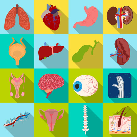Isolated object of body and human symbol. Collection of body and medical vector icon for stock.