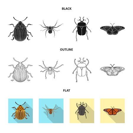 Vector design of insect and fly icon. Set of insect and element stock vector illustration. Banque d'images - 113606210