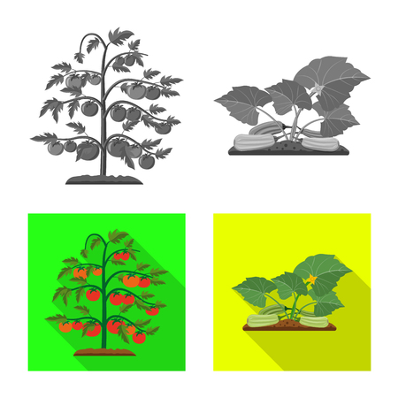Vector illustration of greenhouse and plant symbol. Collection of greenhouse and garden vector icon for stock. Ilustracja