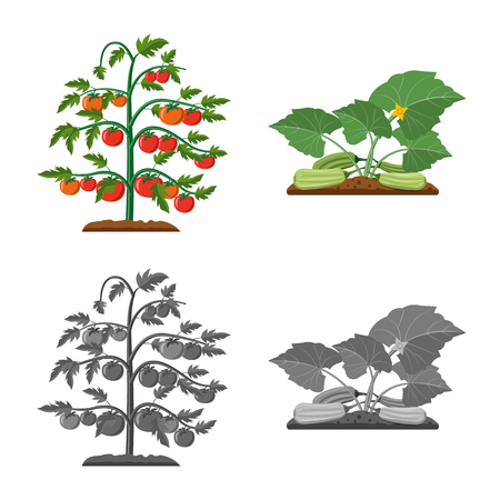 Vector illustration of greenhouse and plant logo. Set of greenhouse and garden vector icon for stock. Ilustracja