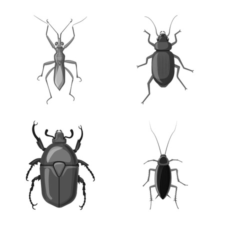 Vector design of insect and fly symbol. Set of insect and element stock symbol for web. Illustration