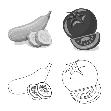 Vector illustration of vegetable and fruit sign. Collection of vegetable and vegetarian stock vector illustration.