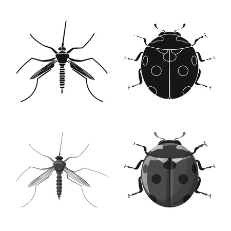 Isolated object of insect and fly icon. Collection of insect and element stock symbol for web. Ilustração
