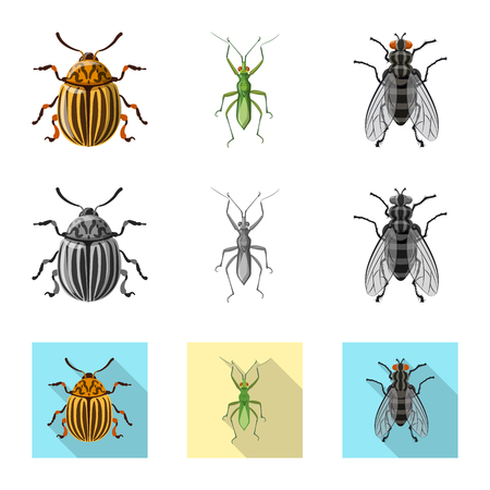 Isolated object of insect and fly sign. Set of insect and element stock vector illustration. Banque d'images - 113959647