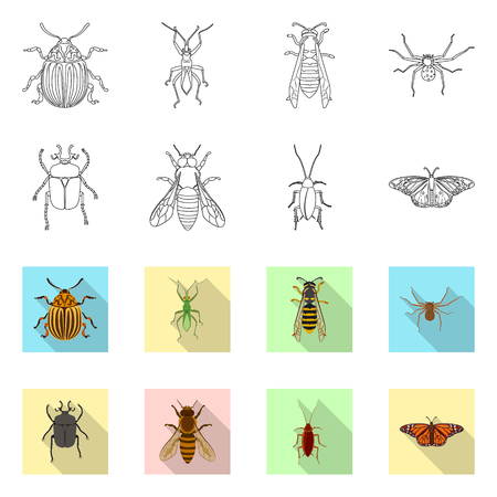 Vector illustration of insect and fly logo. Collection of insect and element stock symbol for web. Çizim