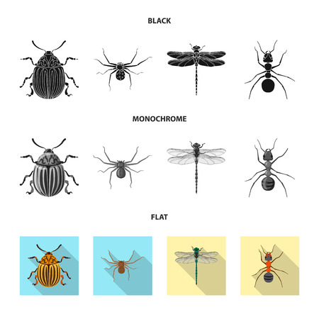 Isolated object of insect and fly sign. Collection of insect and element vector icon for stock. Illustration