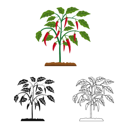 Vector illustration of greenhouse and plant sign. Collection of greenhouse and garden stock symbol for web. Illusztráció