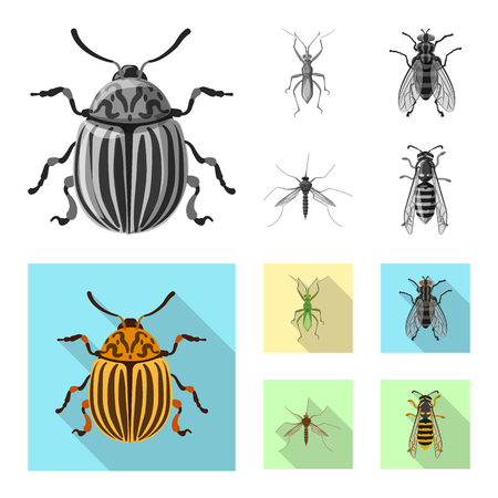 Vector design of insect and fly symbol. Collection of insect and element vector icon for stock.