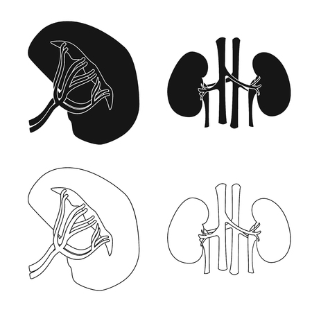 Vector design of body and human icon. Set of body and medical stock vector illustration. Illustration