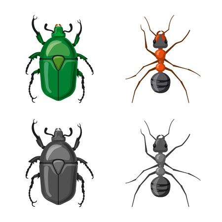 Vector design of insect and fly sign. Collection of insect and element vector icon for stock.