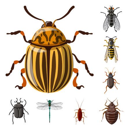 Objeto aislado del logotipo de insectos y moscas. Conjunto de símbolo de stock de insectos y elementos para web.
