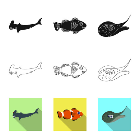 Isolated object of sea and animal logo. Collection of sea and marine vector icon for stock.