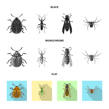 Vector design of insect and fly sign. Collection of insect and element vector icon for stock. Illustration