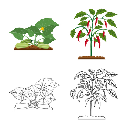 Isolated object of greenhouse and plant symbol. Collection of greenhouse and garden stock vector illustration. Ilustracja