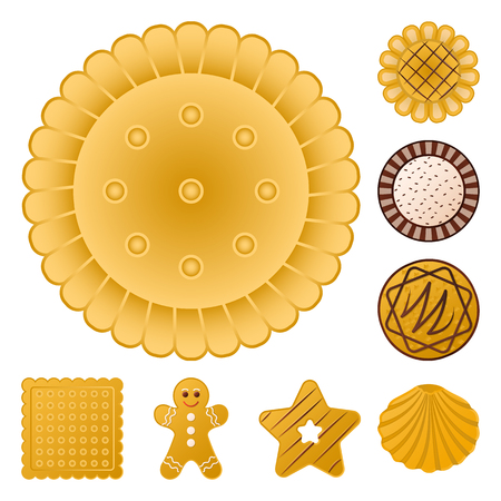 Vektordesign des Keks- und Backsymbols. Sammlung von Keks- und Schokoladenvorrat-Vektorillustration. Vektorgrafik
