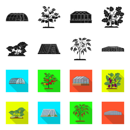Vector design of greenhouse and plant sign. Collection of greenhouse and garden stock vector illustration. Vector Illustratie