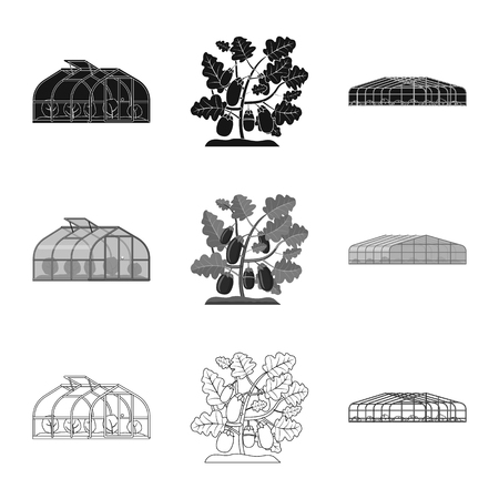 Vector illustration of greenhouse and plant icon. Set of greenhouse and garden stock symbol for web. Standard-Bild - 114628938
