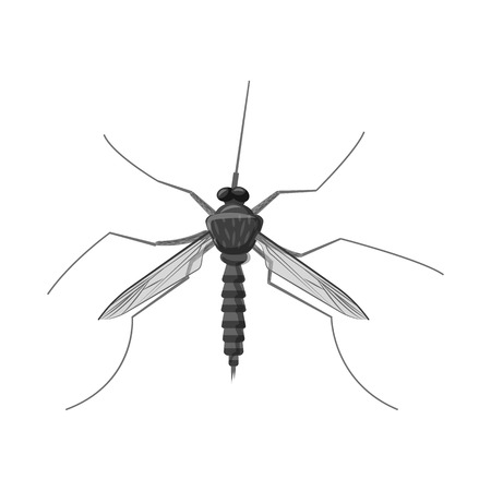 Isolated object of insect and fly symbol. Collection of insect and element stock symbol for web. Banco de Imagens - 115459159