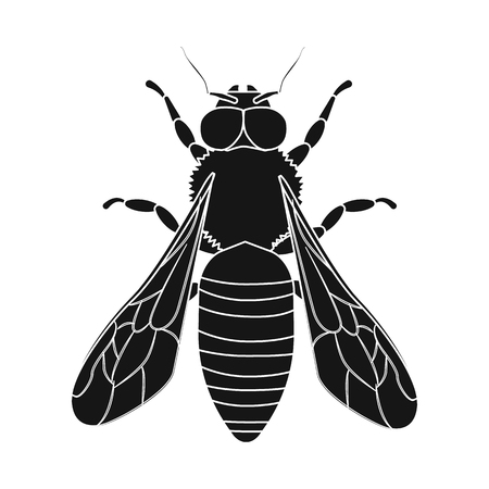 Isolated object of insect and fly sign. Collection of insect and element vector icon for stock.