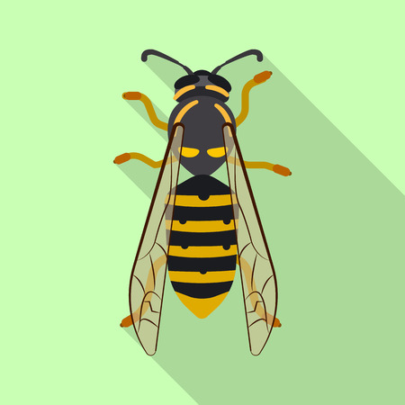 Vector illustration of insect and fly sign. Collection of insect and element stock symbol for web.
