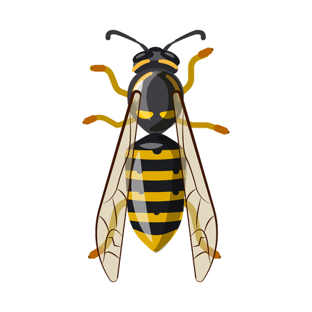 Isolated object of insect and fly logo. Collection of insect and element vector icon for stock. Illusztráció
